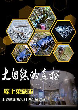 線上蒐藏庫-全球遠距探索科博百萬珍藏